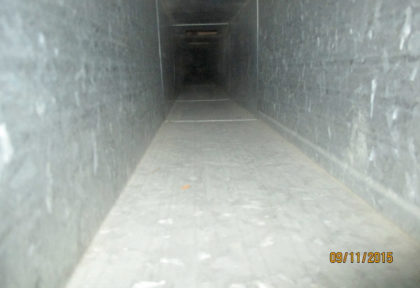 Duct Cleaning After
